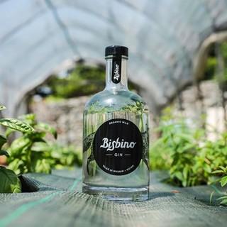 Il Ticino ha anche il suo gin: il Bisbino