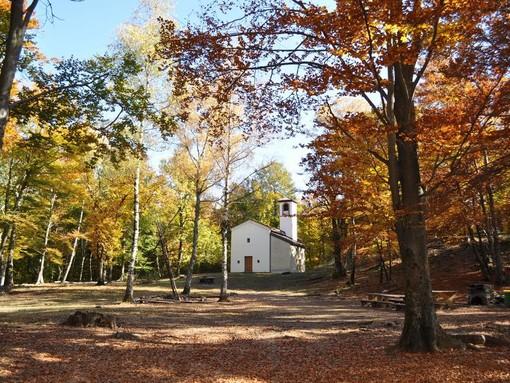 5 sentieri dove la castagna è regina: il parco del Castagno