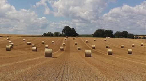 """Concorso fotografico """"Obiettivo Agricoltura"""""""