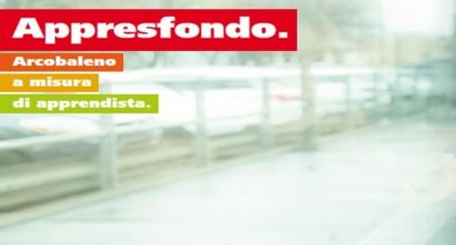 """Ticino, abbonamento Arcobaleno per apprendisti """"Appresfondo"""""""