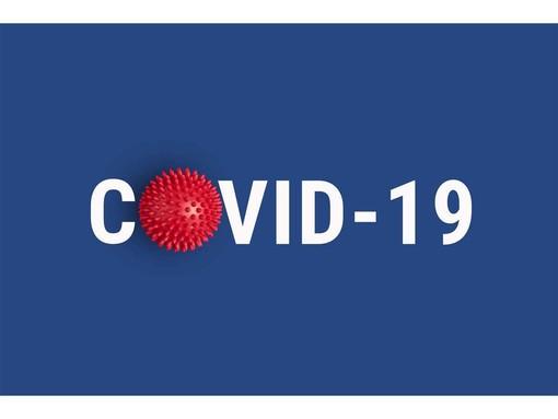 Quello che i ticinesi debbono sapere sugli aiuti Covid