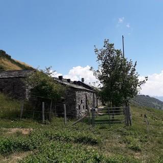 Sulla via degli Alpeggi: Monte Lema - Alpe di Cima Pianca - Miglieglia